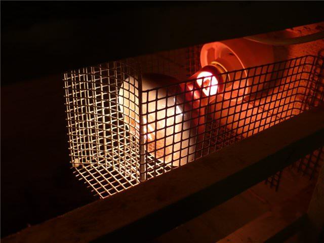 ИК-лампа в курятнике
